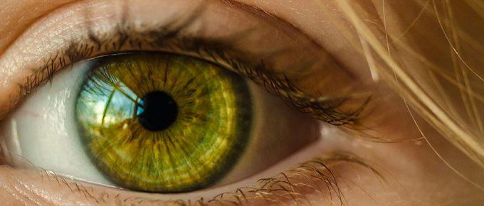 Non verbal, écoutez avec vos yeux