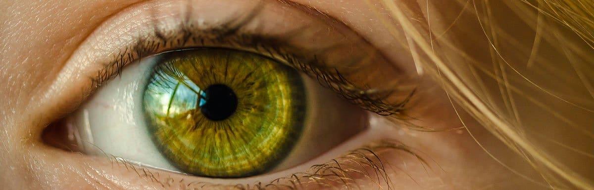 Le non verbal : écoutez avec vos yeux